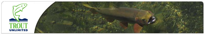 troutunlimited Alumni banner